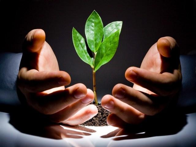 Bắt đầu khởi nghiệp cần gì ?